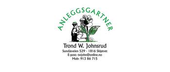 trondWilly_logo